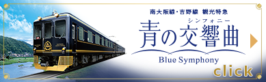 Sightseeing Limited Express Blue Symphony