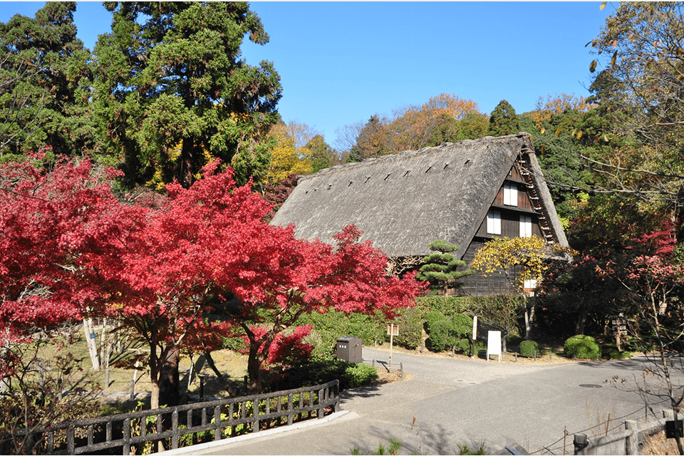 Higashiyama Zoo and Botanical Gardens